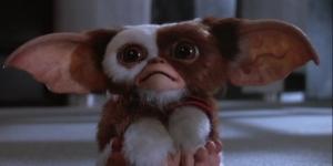 Gremlins 3 already has a script, says Chris Columbus