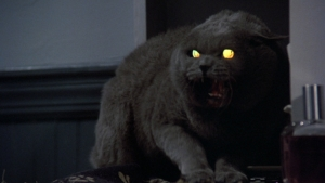 Pet Sematary remake finally finds directors, might actually happen