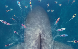 The Meg fun facts: everything you could ever want to know about the megalodon